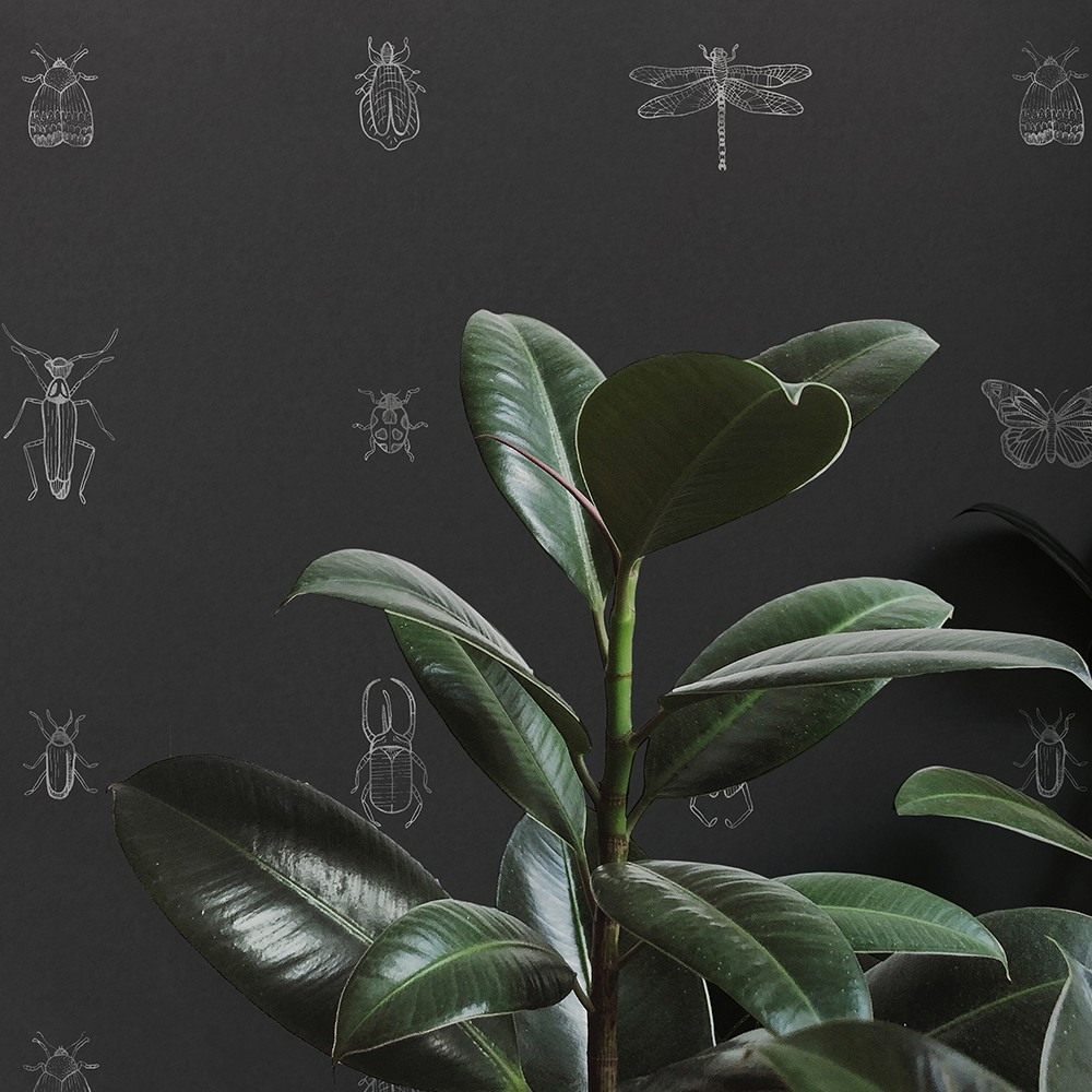 Hand drawn bugs in silver on black wallpaper