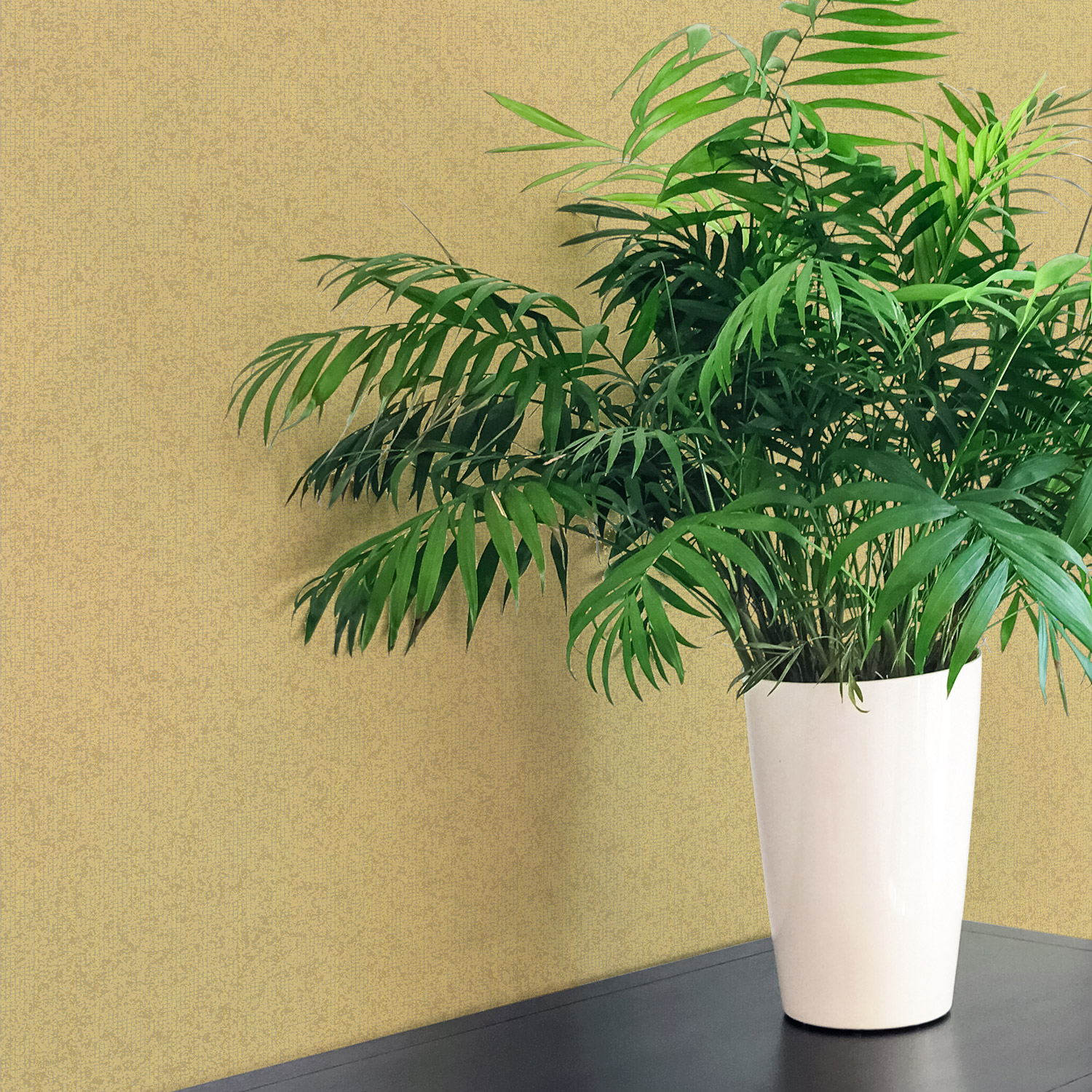 Lifestyle image of wallpaper Keymer WP0080203 behind a fern plant